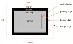 CSS Box Model (sumber: www.w3c.org)